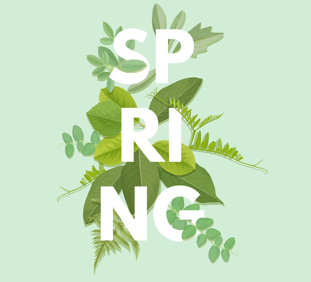 6.4. SPRING AWAKENING